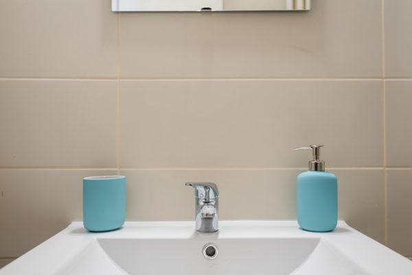 Appartement Lyon Gerland - Salle de bain
